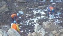 海岸での油防除作業