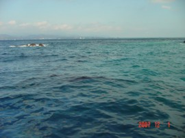 韓国船籍貨物船「SUAM」座礁事故