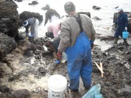 海岸の汚染 油除去作業